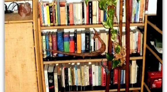 lost-in-my-books.jpg