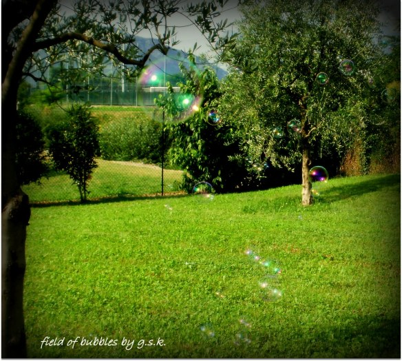 Field and Bubble
