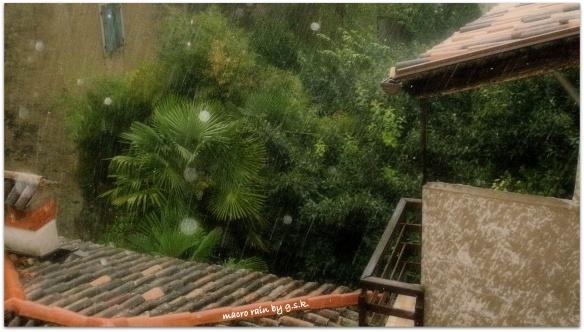 macro rain