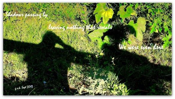 Haiga Shadows