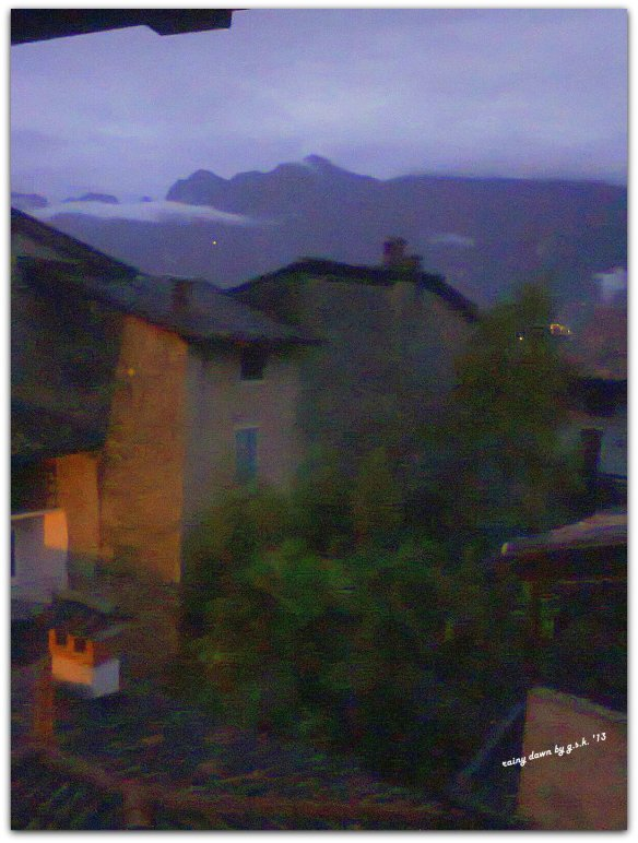 rainy dawn