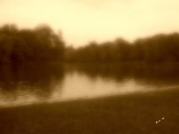 foggy lake_small