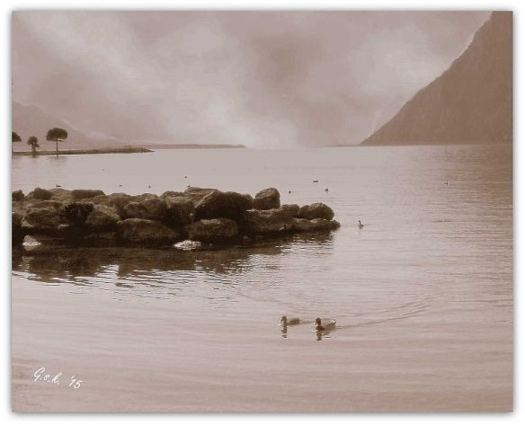 ducksWith sky_sepia_small