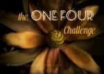 onefourchallenge