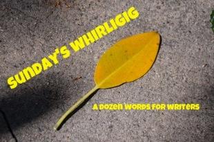 Sunday's Whirligig - Whirligig 38