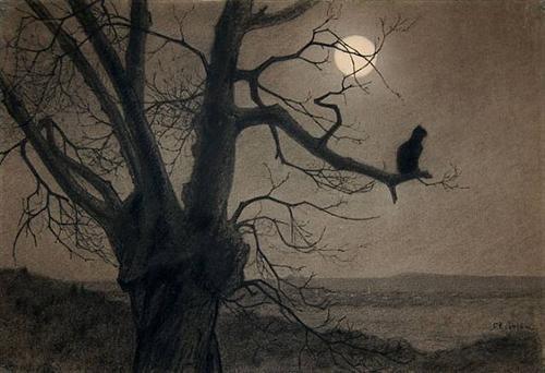 cat-in-the-moonlight.jpg!Blog