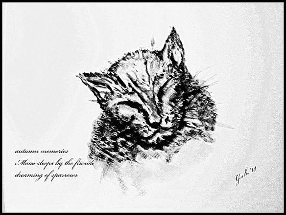 Brindle Cat Haiku