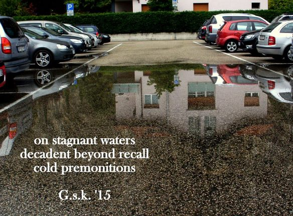 Stagnant Water Reflection