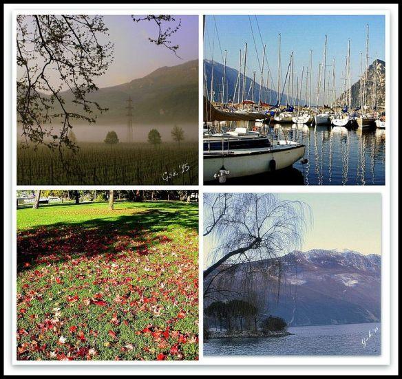 four seasons_small framed