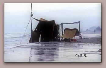 summer 1987_2