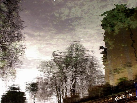 moat reflections