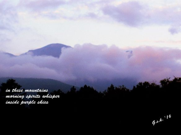 dawn small haiga