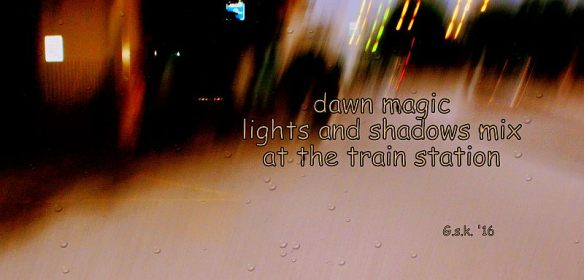 light and shadow haiga